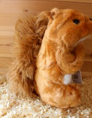 Woodland Hand Puppets - Red Squirrel